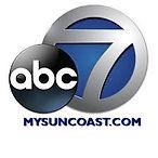 ABC 7 WWSB.jpg