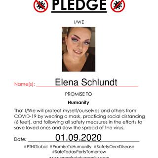 Pledge (Original)-1890001.png