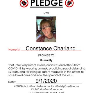 Pledge (Original)-2070001.png