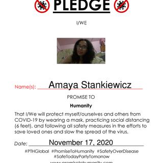 Pledge (Original)-70001.png