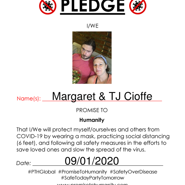 Pledge (Original)-1800001.png