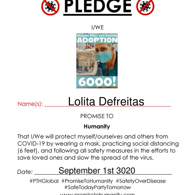 Pledge (Original)-1950001.png