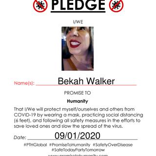 Pledge (Original)-2110001.png