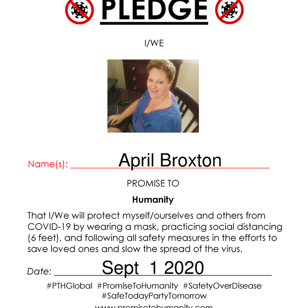 Pledge (Original)-2010001.png