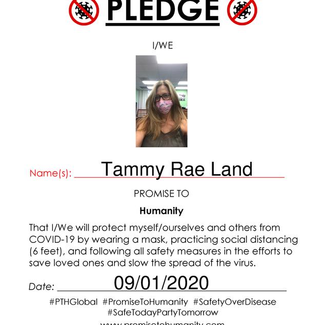 Pledge (Original)-2040001.png