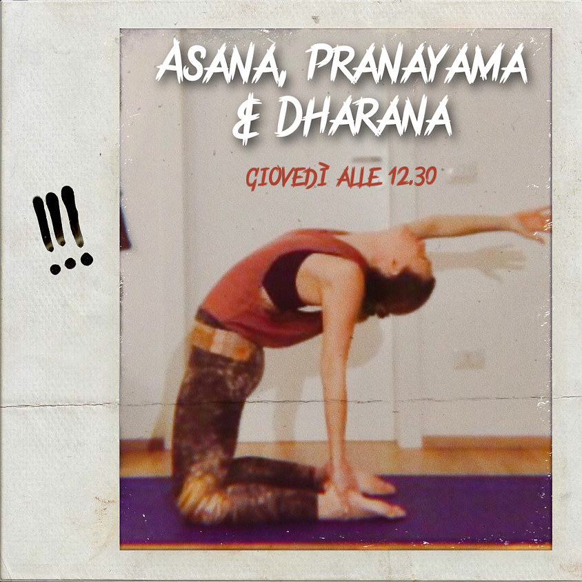 Asana, Pranayama e Dharana - Hatha II di Glenda Viveki Martins