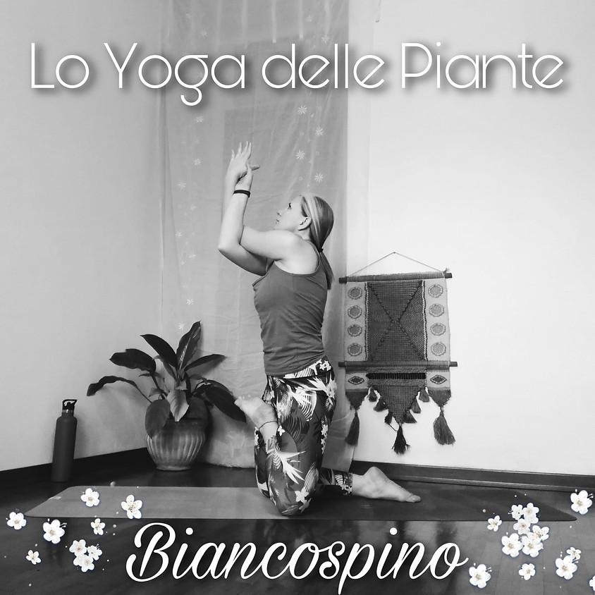 LO YOGA DELLE PIANTE con Tuatara Yoga - Sessione: Biancospino