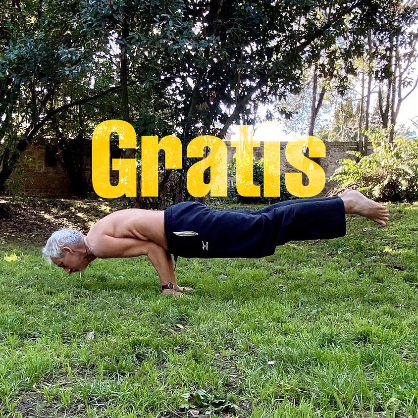 Pratica Yoga Tradizionale con Nemir **Gratis** - Per Tutti i Livelli