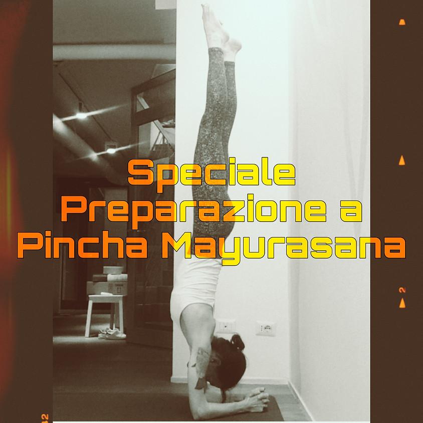 """Hatha Yoga con Marta - Classe Speciale """"Preparazione a Pincha Mayurasana"""""""
