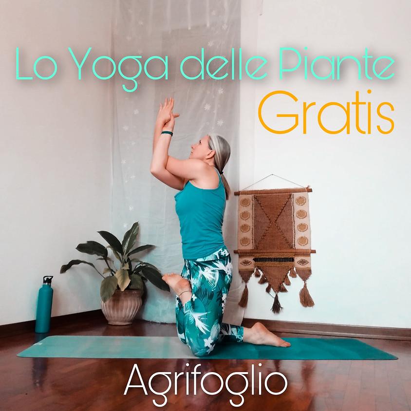 LO YOGA DELLE PIANTE con Tuatara Yoga - 1a Sessione: AGRIFOGLIO **GRATIS**