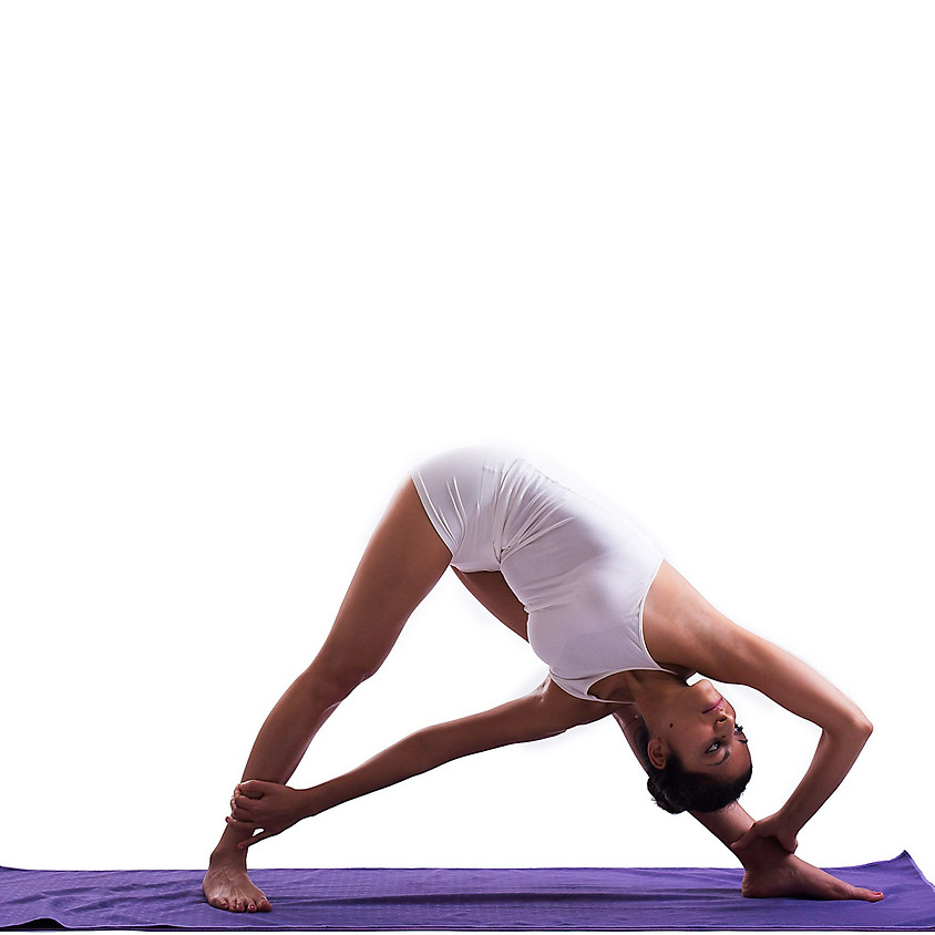 Pratica Hatha Yoga Flow con Barbara Cavaliere