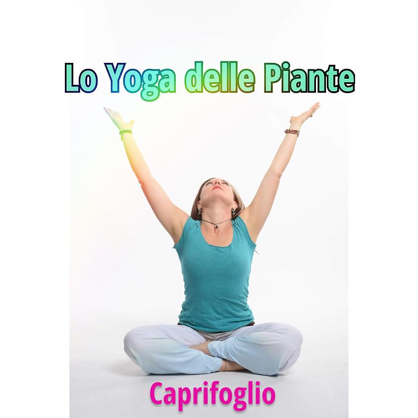 Lo Yoga delle Piante di Tuatara Yoga - Sessione: Caprifoglio