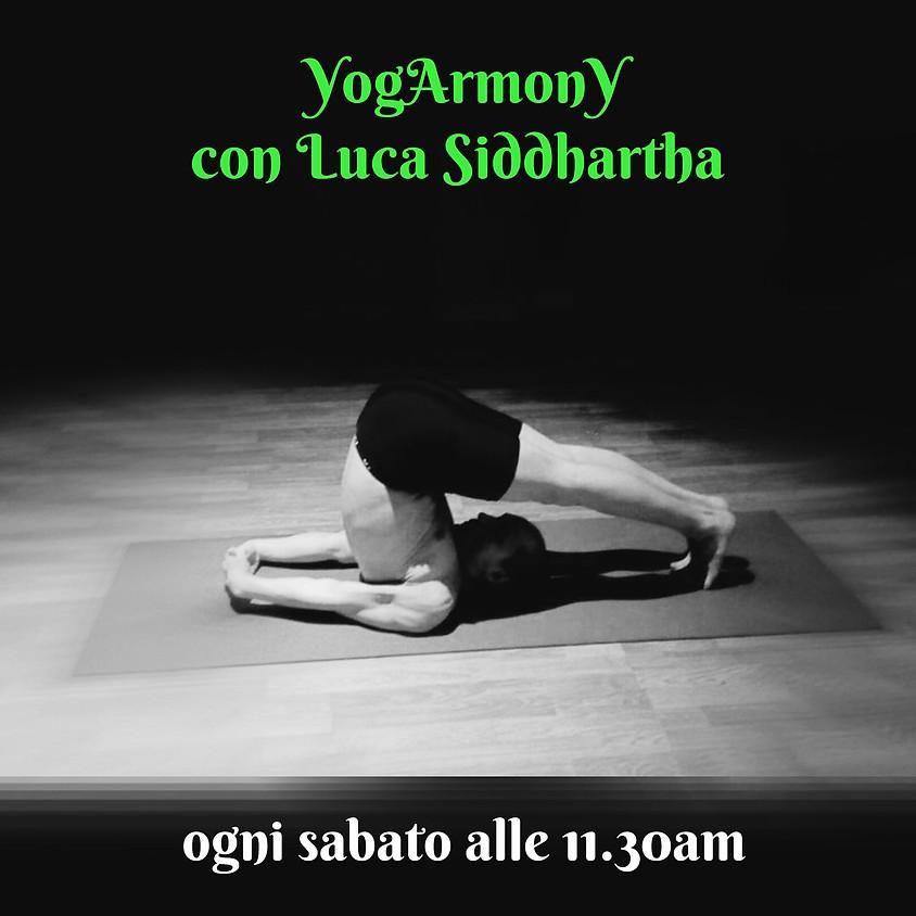Pratica YogArmonY di Luca Siddhartha - Per Tutti i Livelli