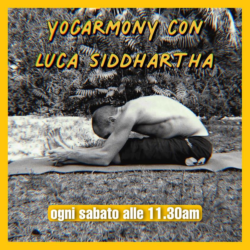 Pratica YogArmonY con Luca Siddhartha - Per Tutti i Livelli