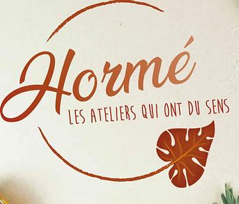 Screenshot_2021-02-09 Accueil Hormé.png