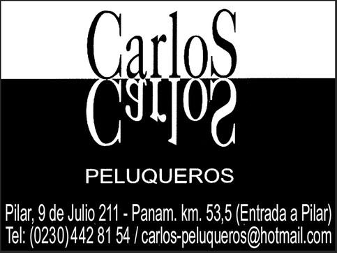 Peluquerias_Carlos_OpcionesPilar.jpg