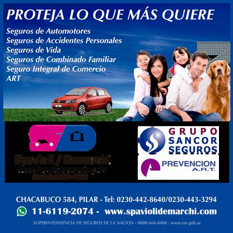 Seguros_Spavioli%20Demarchi_OpcionesPilar..png