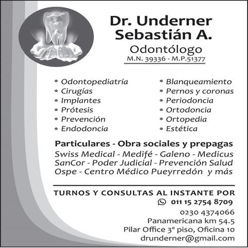 Odontologos_UNDERNER%20A_Pilar.jpg