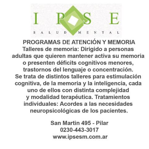 Memoria%20Talleres_IPSE_OpcionesPilar.jpg