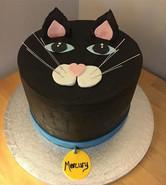 Cats! Chocolate fudge cake for a birthda