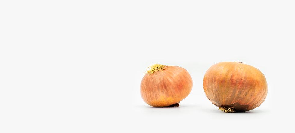 3Strip_Pag_onions.jpg