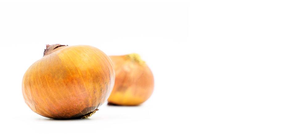 4Strip_Pag_onions.jpg