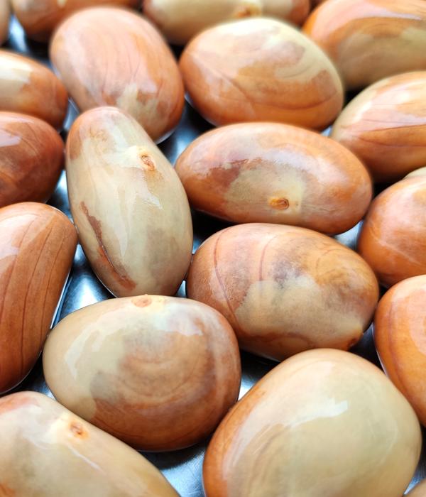 seeds_jackfruit.png