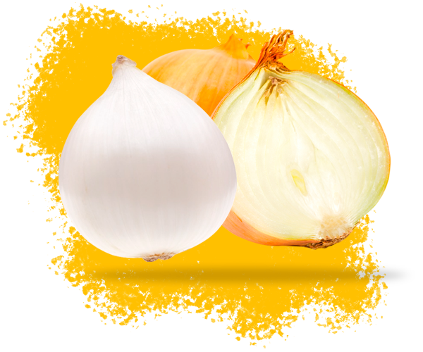 Onions_header2.png