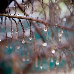 Rain on Meditation