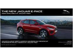 Jaguar Troy