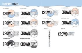 CrowdSurfIdentity3.jpg