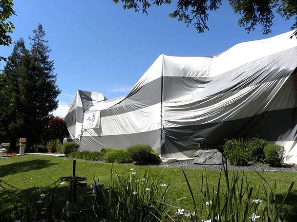tent-fumigation.jpg