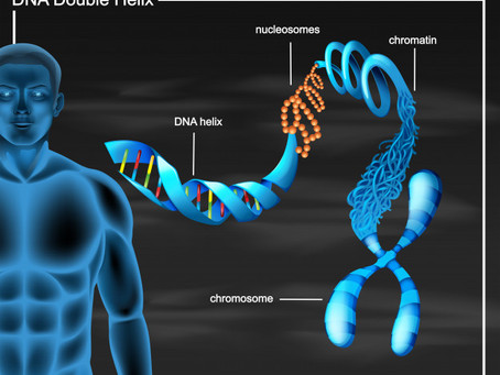 A History of Gene Sequencing