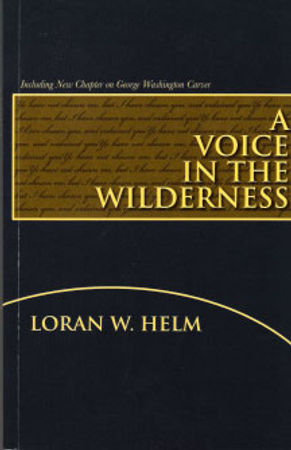 a voice in the wilderness.jpg