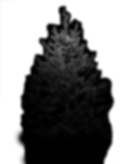 Tree Dark Tip Only.png