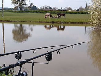 fishing at frodesley the shepherds loft