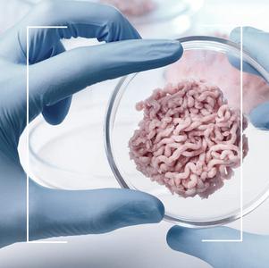 Viande cellulaire : le futur de l'alimentation ?