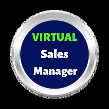 Virtual_Sales_Manager-NBG.png