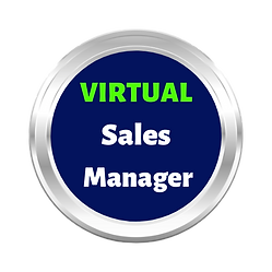 Virtual_Sales_Manager-NBG.png