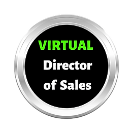 Virtual_Sales_Director_1-NBG.png
