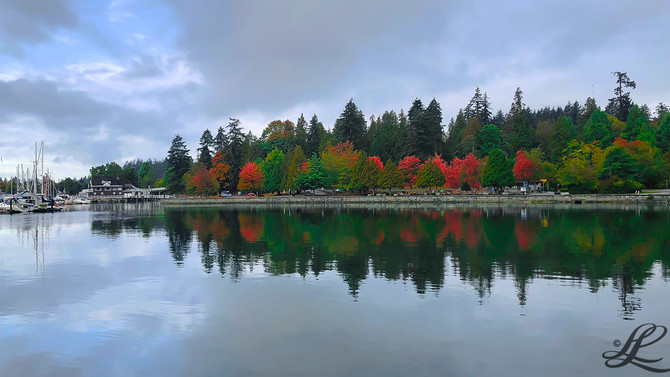 Foliage, Vancouver, BC, Canada,