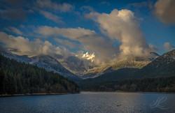 Lions, Seymour Lake