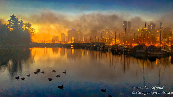 Fog and sunrise playing games, Coal Harbour, Vancouver, BC, Canada