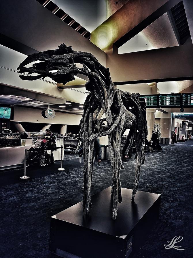San Francisco Airport, CA, USA