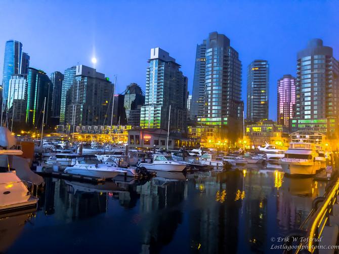 My morning walk views, Vancouver, BC, Canada #3