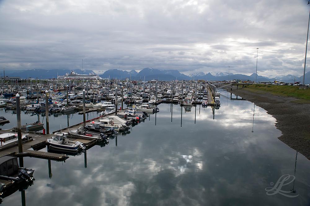 Fishing boats in marina, Homer, AK