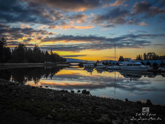My morning walk views, Seawall, Deadman Island, Vancouver, BC, Canada #31