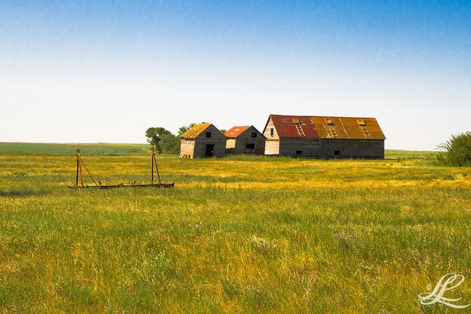 Backroads, SK