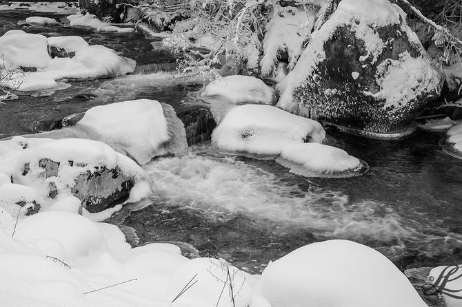Sheep Creek, Salmo, BC