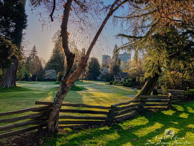 Only 1 km from downtown Vancouver, BC, Canada